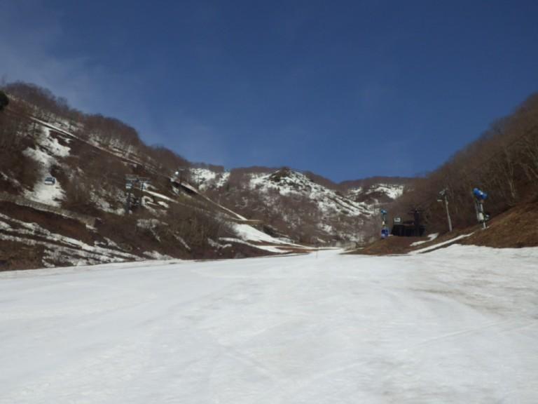 IMGP4696